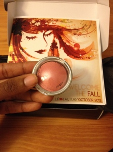 Palladio Beauty Baked Blush in Blushin'
